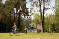 Vakantiepark Coldenhove